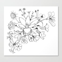 Native Florida Flowers Canvas Print