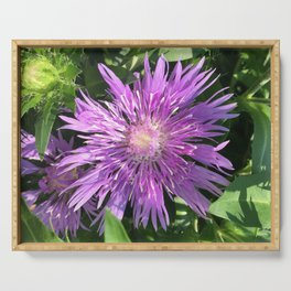 Purple Aster Serving Tray