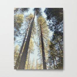 Trees for Days Metal Print
