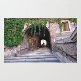 Escalinata Rug