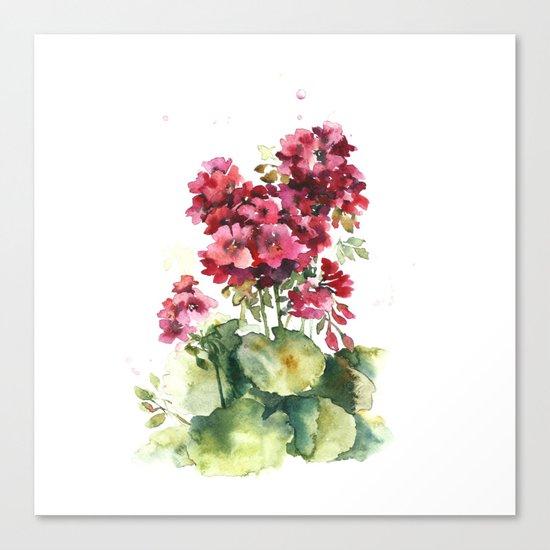 Watercolor geranium flowers Canvas Print