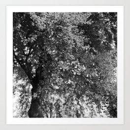 Forgotten '6' Art Print