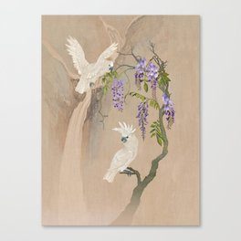 Cockatoos and Wisteria Canvas Print