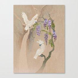 Cockatoos and Wisteria Canvas Print