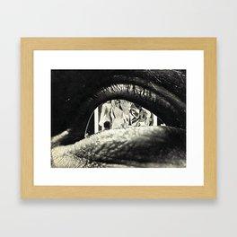 548 Framed Art Print