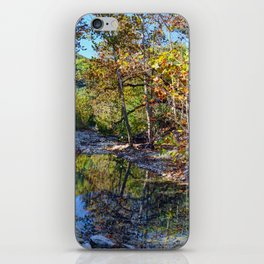 Lost Maples iPhone Skin