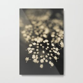 Summer Lace Metal Print