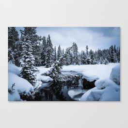 Green River III Canvas Print