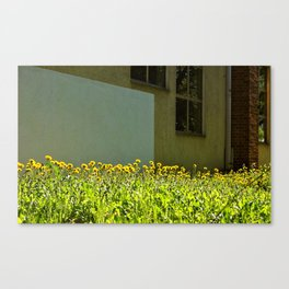 Unexpected Fields  Canvas Print