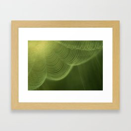 Net Framed Art Print