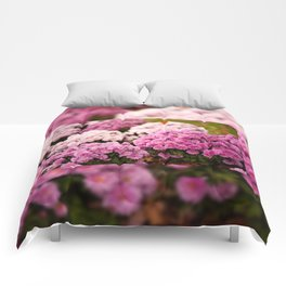 Many pink Dendranthema flowers Comforters
