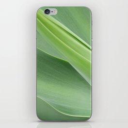 Green Agave Attenuata iPhone Skin
