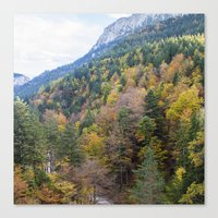 forrest Canvas Prints featuring Forrest  by Veronika