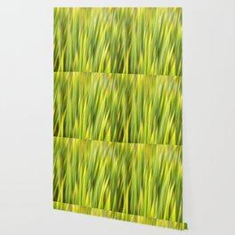 Green Nature Abstract Wallpaper