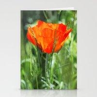 poppy Stationery Cards featuring Poppy by Falko Follert Art-FF77