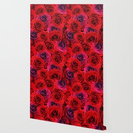 Deep Red and Purple Roses Wallpaper