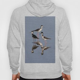 Black necked Stilt Hoody