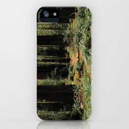 Deer in Redwood Forest iPhone Case
