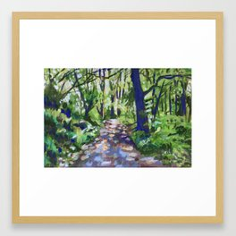 Dappled Path at Dun na Ri Framed Art Print