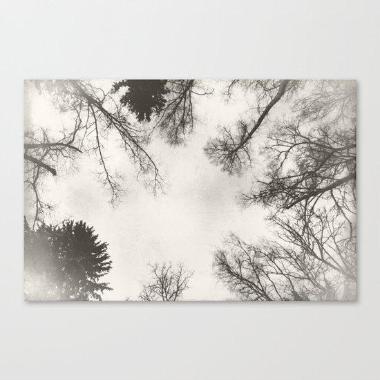 Under January Sky Canvas Print