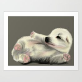 Adorable Puppy on a Coloured Background Art Print