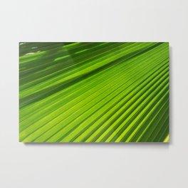 green light II Metal Print