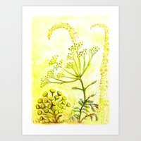 Tansy and Great mullein Art Print