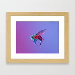 Bugged #10 Framed Art Print