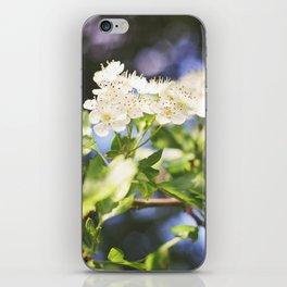 Summer Dalliance; iPhone Skin