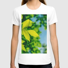 Fresh Green Tree Leaves In Summer, Tree Leaf, Intense Vivid Green, Nature In Summer, Environment T-shirt