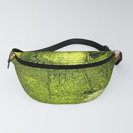 Fruits Abstract Ornament Fanny Pack