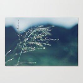 Hawaii Wind Canvas Print