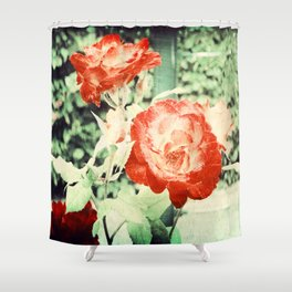 Textured Chicago Peace Rose Shower Curtain