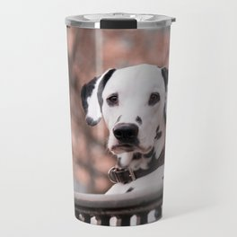 Dalmatian Dog Looking Out Over Gate Travel Mug