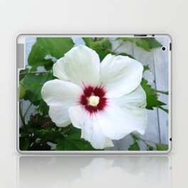 White Hibiscus Flower Ruffle Laptop & iPad Skin