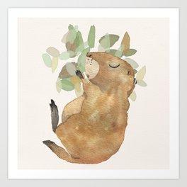 Black Tailed Prairiedog - Sleeping Animals Art Print