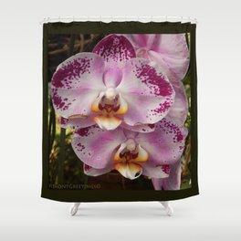 Pink Orchid Blossom from Mexico Shower Curtain