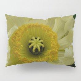 Yellow Cosmo Pillow Sham