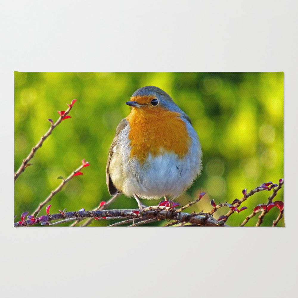 Robin Redbreast Rug by Catherineogden (RUG8331014) photo