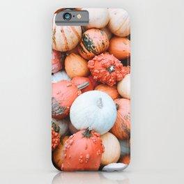 Cute Lil Pumpkins iPhone Case