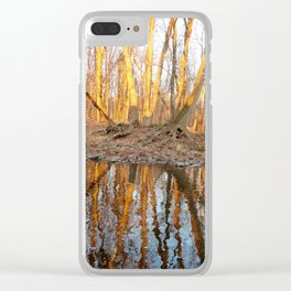 Teresa Clear iPhone Case