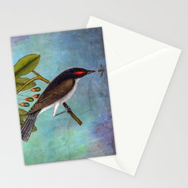 Eastern Kingbird and Sassafrass, Antique Natural History Art Collage Stationery Cards