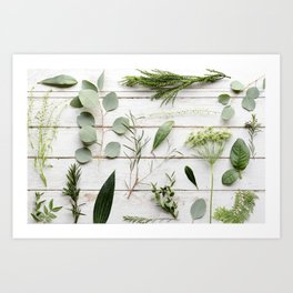 Green Botanical Flowers Art Print