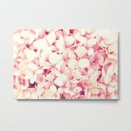 Rose Pink Flowers (Hydrangea) Metal Print