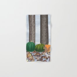 fox squirrels, heirloom pumpkins, & acorns Hand & Bath Towel