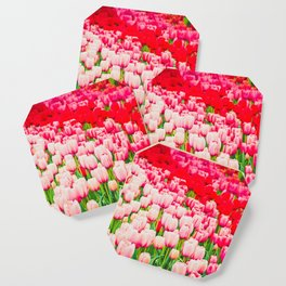 Pink and red tulips on the flowerbed in Keukenhof. Shallow depth of field Coaster
