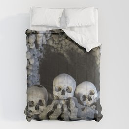 Ossuary (Bones and Skulls in the Cemetery Church of All Saints) Comforters