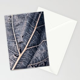 Organic Winter Decay Stationery Cards