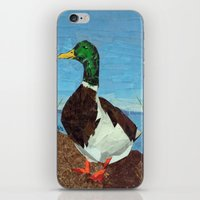 duck iPhone & iPod Skins featuring Duck by GiGi Garcia Collages