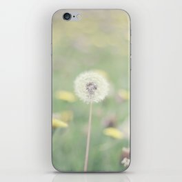 A thousand wishes iPhone Skin